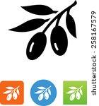 olive branch symbol for... | Shutterstock .eps vector #258167579