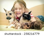 laughing child and a cat and a... | Shutterstock . vector #258216779