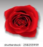 vector photorealistic three... | Shutterstock .eps vector #258255959