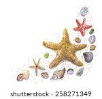 Shells. Watercolor.