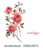 Stock photo floral background beautiful roses 258315071
