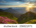 Stock photo rhododendron in mountains on a background sunrise 258321971