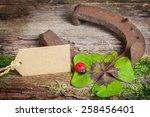 good luck | Shutterstock . vector #258456401