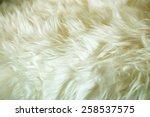 Sheepskin Texture  Fur Close U...
