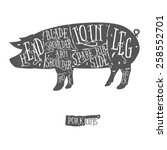 american cuts of pork  vintage... | Shutterstock . vector #258552701