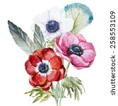 Anemone  Watercolor  Flowers ...