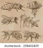 bees  beekeeping and honey.... | Shutterstock .eps vector #258601829