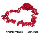 Beautiful red roses on a white background - stock photo