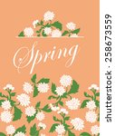 vector vintage texture with... | Shutterstock .eps vector #258673559