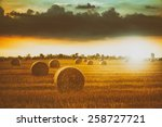 bales on the field | Shutterstock . vector #258727721
