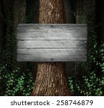 forest blank sign background as ... | Shutterstock . vector #258746879