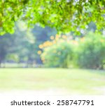 blurred trees with bokeh in... | Shutterstock . vector #258747791