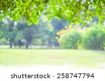blurred trees with bokeh in... | Shutterstock . vector #258747794