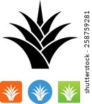Yucca Symbol For Download....