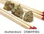 pot  | Shutterstock . vector #258849581