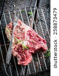 Fresh piece of red meat with rosemary and pepper - stock photo