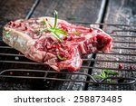 Fresh piece of red meat with herbs - stock photo