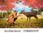 Nara Deer Roam Free In Nara...