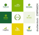 set of natural and organic... | Shutterstock .eps vector #258906824