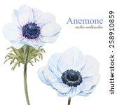 Watercolor  Vector  Flowers ...