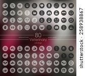 set of veterinary icons | Shutterstock .eps vector #258938867