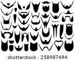 set of different beards... | Shutterstock .eps vector #258987494