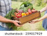 Farmer Giving Box Of Veg To...