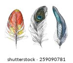 watercolor feather. vector... | Shutterstock .eps vector #259090781