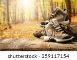 shoes table of wood and forest  | Shutterstock . vector #259117154