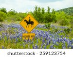 Landscape Of Texas Hill Countr...