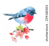 Watercolor Spring Pink Robin O...