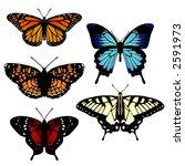 five vector butterflies   Shutterstock .eps vector #2591973