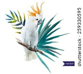 bird  parrot  hibiscus  jungle  ... | Shutterstock .eps vector #259330595