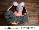 little cute baby dressed as an... | Shutterstock . vector #259383917