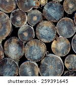 Pile Of Wood Logs Ready For...