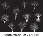 collection of trees silhouettes | Shutterstock .eps vector #259578449