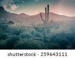 Desert Landscape   Rain Fallin...