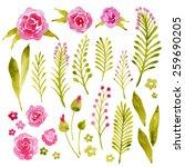watercolor vector set with... | Shutterstock .eps vector #259690205