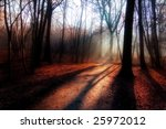 red glow forest | Shutterstock . vector #25972012