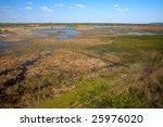 danube delta landscape | Shutterstock . vector #25976020