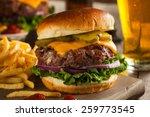 grass fed bison hamburger with... | Shutterstock . vector #259773545