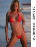sexy blond bikini model in a...   Shutterstock . vector #2597950