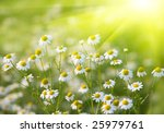 rising sun above the beautiful... | Shutterstock . vector #25979761