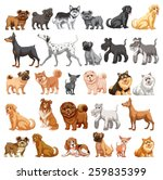 Stock vector different type of dogs small and big 259835399