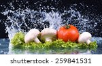 red tomato  mushrooms and salad ... | Shutterstock . vector #259841531