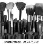 professional make up brush... | Shutterstock . vector #259874219