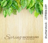 spring leaves on wood... | Shutterstock .eps vector #259886189