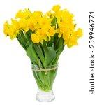 Bunch Of Fresh Spring Yellow...