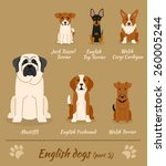 set of english dogs   part 3.... | Shutterstock .eps vector #260005244