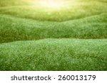 artificial green grass  field... | Shutterstock . vector #260013179